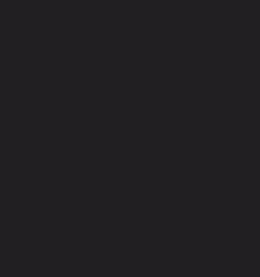 Leijon Stenugnsbageri & Konditori logotyp